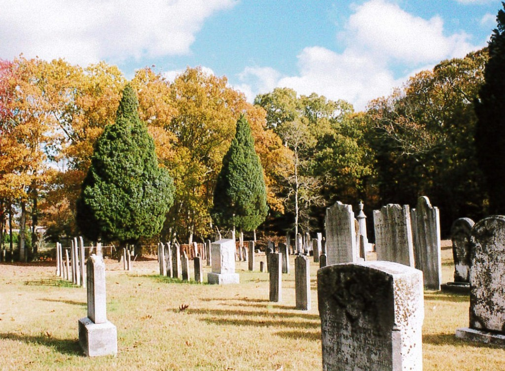 Graveyard in Fall Cedars